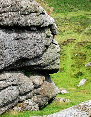 Dartmoor National Park (5)