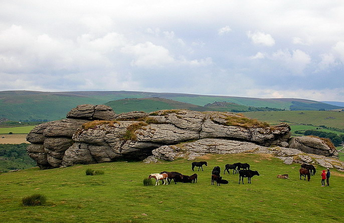 Dartmoor National Park (6)