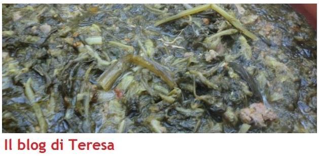Minestra maritata (9)