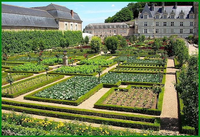 castello-e-giardini-di-villandry-8